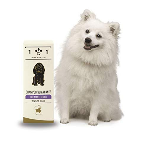 Champú blanqueador Natural para Perros, 250ml - para Pelaje Gris o Blanco - Adecuado para Perros con Pelo Largo o Corto como maltés, caniches, Bichon Frise, shih tzu, etc - Linea 101
