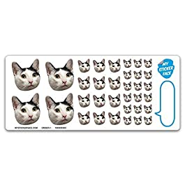 Custom Face Stickers, Pet Stickers, Stickers of Your Face, Elite Sampler Sheet – Custom Gift