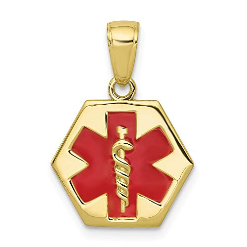 10K Yellow Gold Enameled Medical Disk Charm Necklace Pendant with 18
