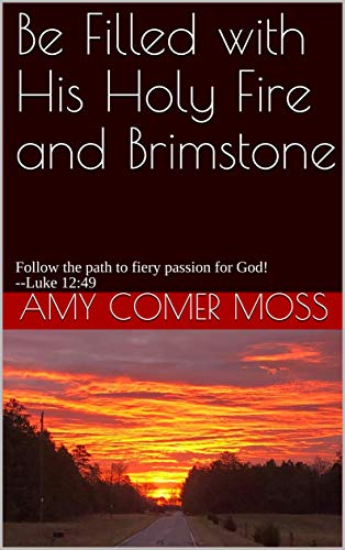 Be Filled with His Holy Fire and Brimstone: Follow the path to fiery passion for God! --Luke 12:49 (English Edition)
