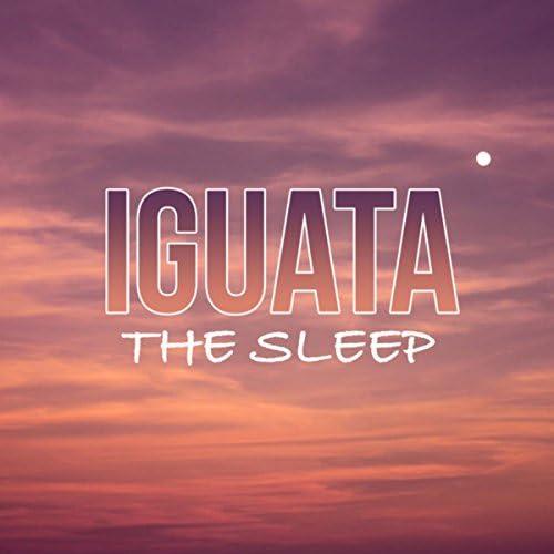 Iguata