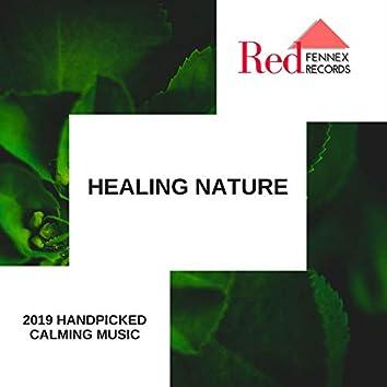 Healing Nature - 2019 Handpicked Calming Music