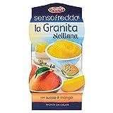la granita siciliana dolfin con succo di mango ensofreddo 2x100ml sorbetto