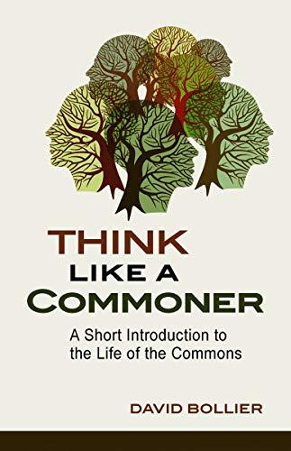 Ambientador De Coche California  marca New Society Publishers - New Society Publishers