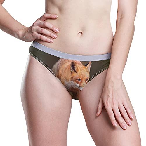 PUXUQU Damen Boxer Slips Höschen Süß Rot Fuchs Low Rise Unterwäsche Bikini Slips Basic Pants