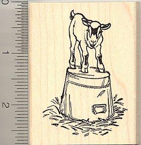 Pygmy Goat on a Bucket Rubber Stamp  Farm Animal