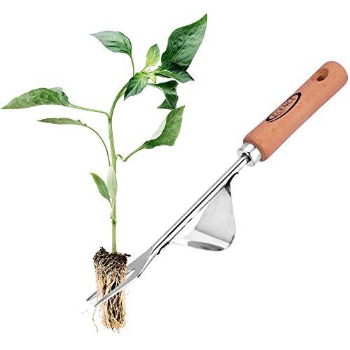 ECENCE Extractor de maleza de Acero Inoxidable, escardador con Mango de Madera, arrancador de Hierbas Manual para escardar y arrancar, Regalo para jardineros y jardineras