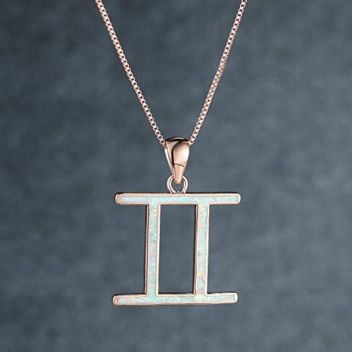 dihui Charm Necklace 18ct Gold & Silver Plated. Valentine's Day Birthday Jewellry Gift for Mum Sister Girls Friends