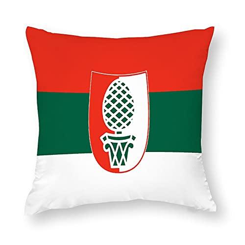 Flagge Ansbach in der Mitte Kissenbezug Quadratisch Dekorative Kissenhülle für Sofa Couch Zuhause Schlafzimmer Indoor Outdoor Cute Kissenbezug 45,7 x 45,7 cm