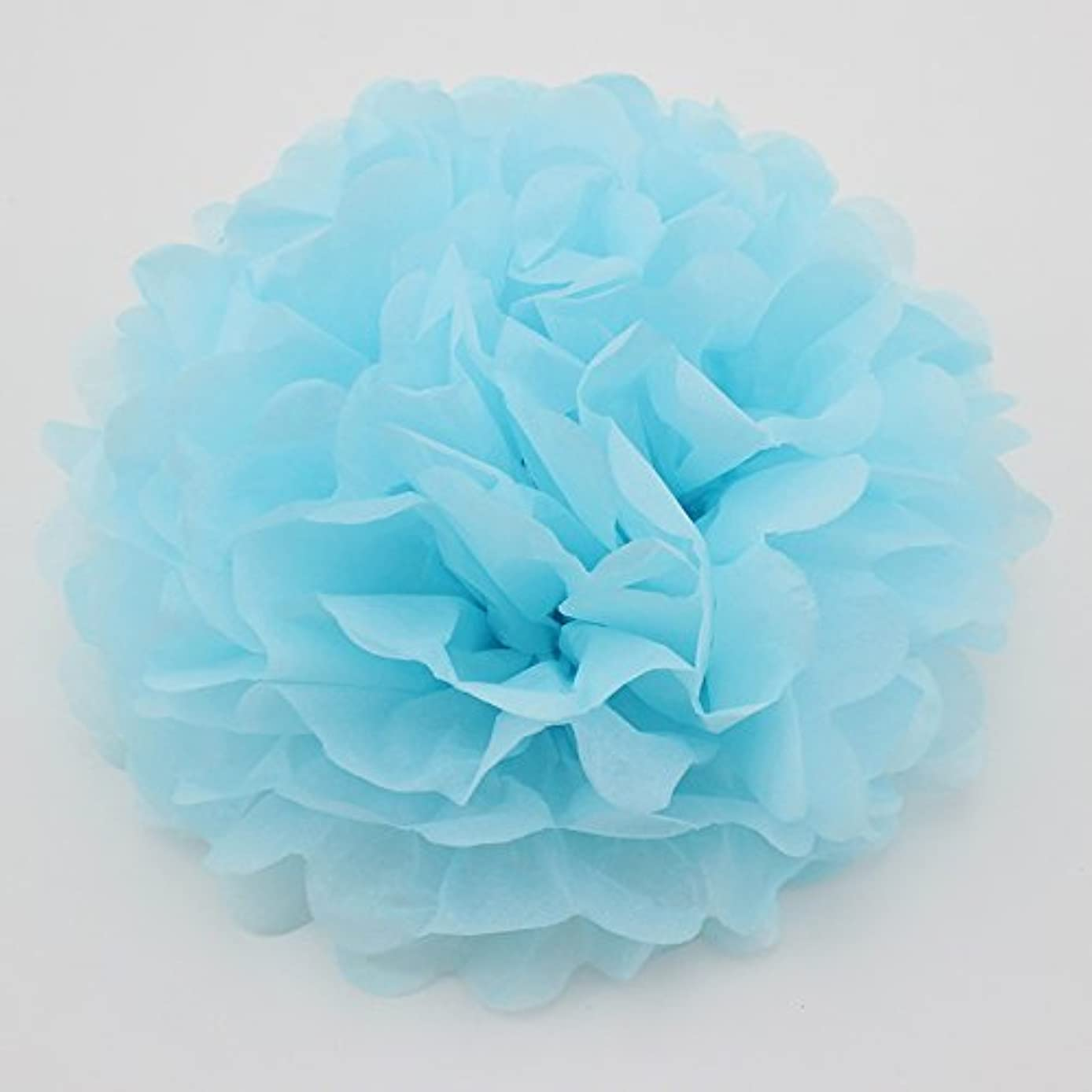 Since10 Pack 10 Inch Tissue Paper Flowers,Tissue Pom Poms Decor,Tissue Paper Pom Poms,Christmas Wedding Party Decor,Baby Shower Party Supplies,Tissue Paper Flowers Kit,Pom Poms Craft(Light Blue)