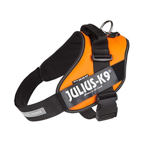 Julius-K9, 16IDC-FOR-2, IDC Powerharness, dog harness, Size: 2, UV Orange