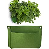 "Vtete 2 Pcs 1 Pocket 15"" × 11"" Vertical Hanging Wall Planter Living Wall Grow Container Bags Green"