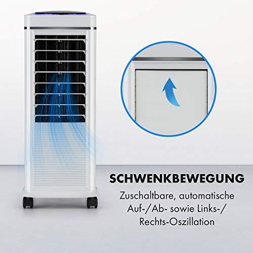 Klarstein Windspiel 3in1 Luftkühler Erfahrungen & Preisvergleich