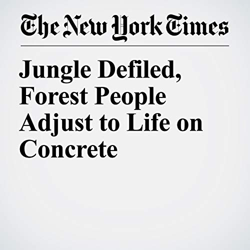 Jungle Defiled, Forest People Adjust to Life on Concrete copertina