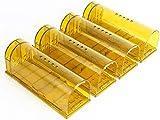 LucaSng Trampa para Ratones 4 Pcs Ratonera Ratas Vivos Trampa para Ratas Ratonera de Plástico Reutilizable con Diseño de Cola Anti-Roto y Agujeros de Aire para Cocina Jardín Hogar Cocina Ático Garaje