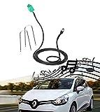 Cable Adaptador de Entrada Auxiliar Hembra para Renault Clio Megane Laguna 2005-2012