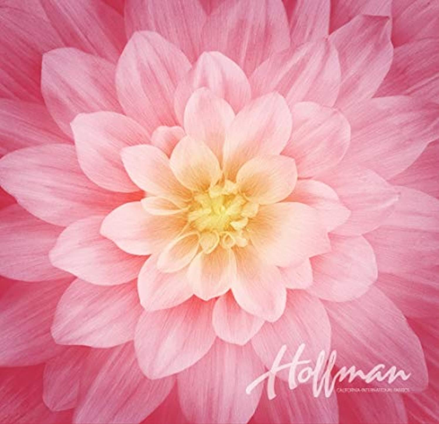 Dream Big - Digital Panel -Large Floral -Wild Rose - by Hoffman Fabrics