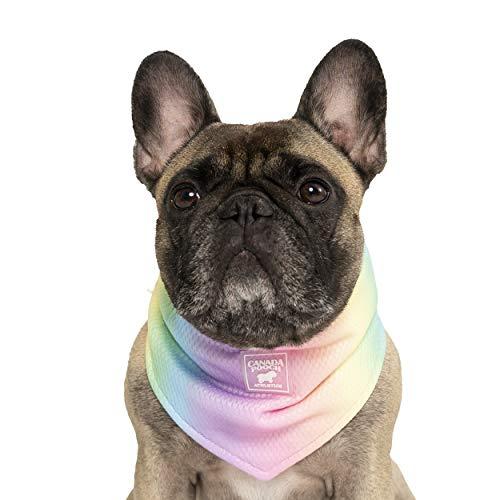 Canada Pooch | Cooling Dog Bandana (S, Rainbow)