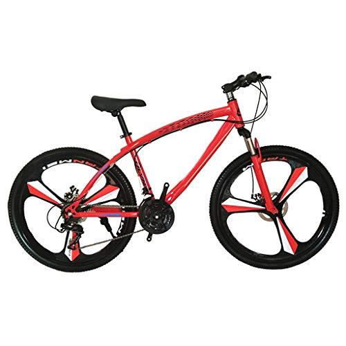 WFFH Mountainbike, Snowbike Radfahren 24-Gang 26-Zoll-Scheibenbremse-Springergabel, Mountainbike Offroad-Rennrad für Erwachsene für Männer und Frauen