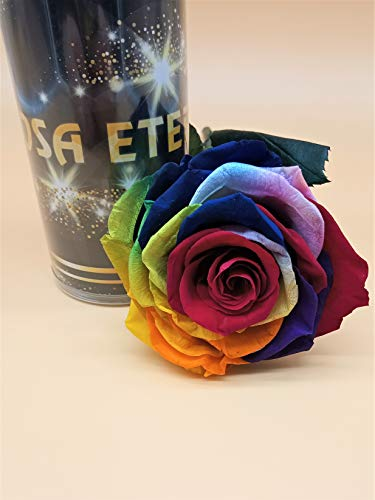 Rosa eterna arco iris multicolor PREMIUN. GRATIS TU ENVÍO Prime. Rosa preservada arco-iris cabeza PREMIUN. Tarjeta dedicatoria y envoltorio de regalo. Tubo conservación de 55 cm. Hecho en España.