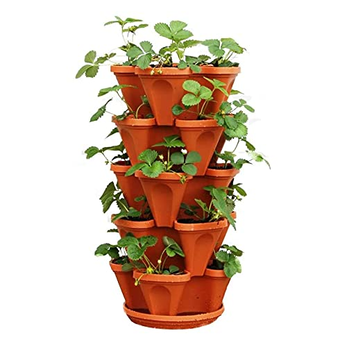 Recopilación de Ollas para verduras disponible en línea para comprar. 5