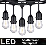 FOXLUX Outdoor String Lights - 48 ft Shatterproof and...