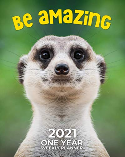 Be Amazing - 2021 One Year Weekly Planner: Meerkat Madness | Super Cute Furbaby Love | Daily Weekly Monthly Calendar Organizer | Nifty 1-Year Agenda ... Tracker, Gratitude Log, To Do Lists and More!
