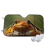 カエル 水 車用 フロント サンシェード 強力断熱&UVカット 軽量 コンパクト 日よけ フロントシェード 軽自動車 吸盤2個