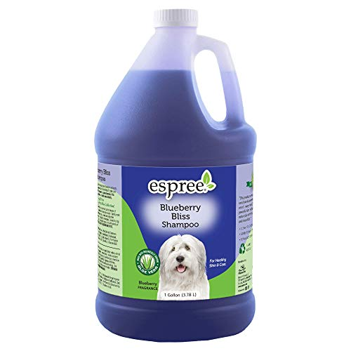 Espree Blueberry Bliss Shampoo, 1 gallon
