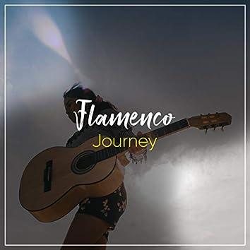 # 1 Album: Flamenco Journey