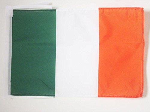 AZ FLAG Flagge Irland 45x30cm mit Kordel - IRISCHE Fahne 30 x 45 cm - flaggen Top Qualität