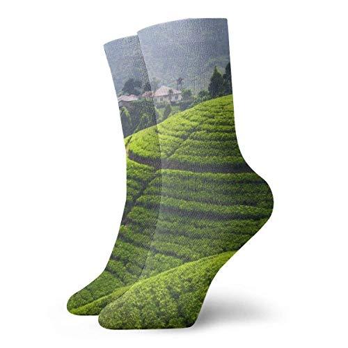 Kevin-Shop Green Mountain Foto Adult Short Socks Fun Sokken voor mannen Womens Yoga Wandelen Fietsen Hardlopen Voetbal Sport