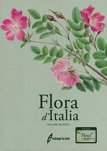 Flora d'Italia. Con USB Flash Drive (Vol. 4)