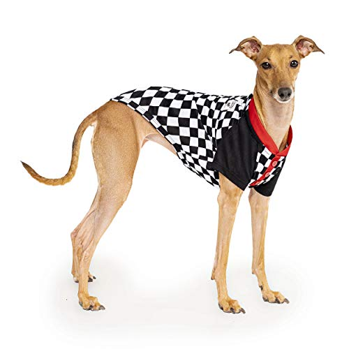 Canada Pooch Not Your Basic Tee - Checkerboard - Size 8, 8 (7-9