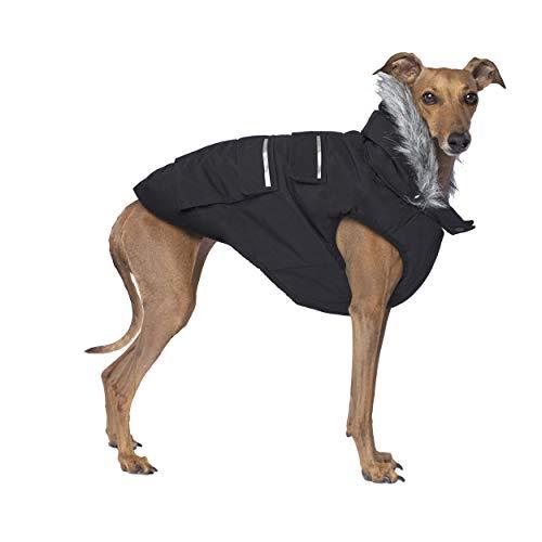 Canada Pooch Everest Explorer Dog Jacket Hooded Winter Dog Coat, Black, 18 (17-19' Back Length)