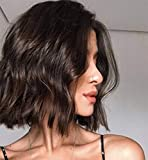 LEMEIZ Natural Looking Loose Curly Brown Wigs for Women Synthetic Hair Brunette Wigs uk Middle Part Brown Hair Wigs 10 inch LEMEIZ-126