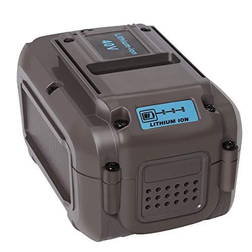 LiBatter 40V MAX 5.0Ah Lithium Ion Premium Battery Compatible with DEWALT All 40V MAX Tools(DCB404)