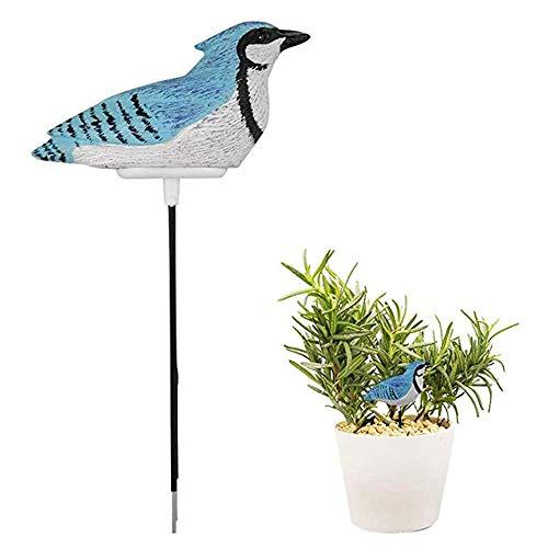 unknow Bodenfeuchtemessgerät Bewässerungsalarm Pflanzenbodentester Hygrometer Sensor Gartenwerkzeug-Kit für Pflanzerwasser Warnung warnen, Blau ewig (Farbe: Blau)
