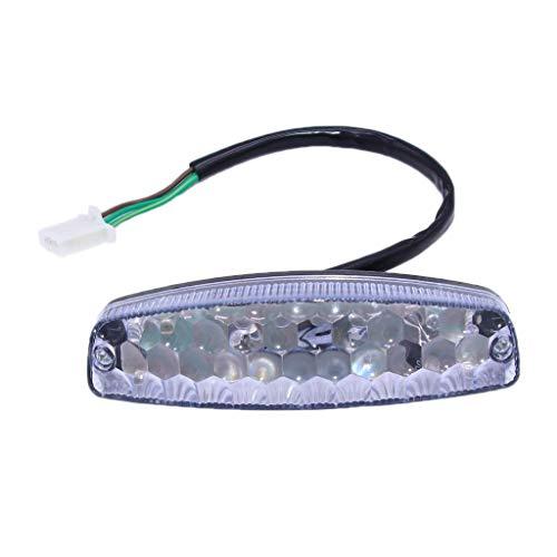 JIACUO Luces traseras, iluminación de Motocicleta, luz indicadora de Freno Trasero, lámpara de Acceso para Motocicleta