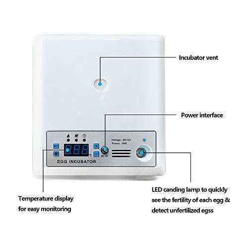 InLoveArts digital Ei-Inkubator 16 Eier Automatischer Brutapparat für den Heimgebrauch, Temperaturregelung und automatisches Drehen für mehrere Eigrößen - 5