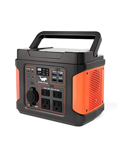 300W Portable Power Station, Ecosonique 100W PD Input/Output Solar Generator with Super Fast Charge, 110V/296Wh Pure Sine Wave Rechargeable CPAP Backup Lithium Battery for Camping Adventure Blackout