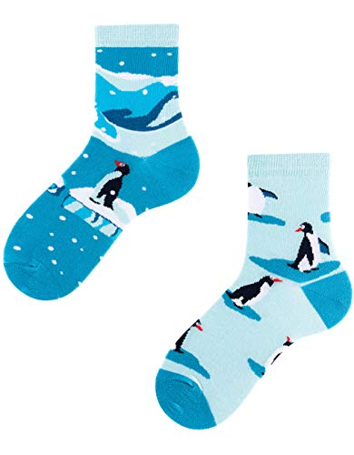 TODO Colours Pinguin Socken Kinder - Penguins Kids - motiv, bunte, lustige Tier-socken für Mädchen, Jungen, Kleinkind (Penguins Kids, 27-30)