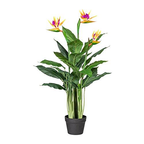 Pflanzen Kölle Kunstblume Strelitzie im Kunststofftopf, 3 Blüten in Orange und Lila, ca. 100 cm