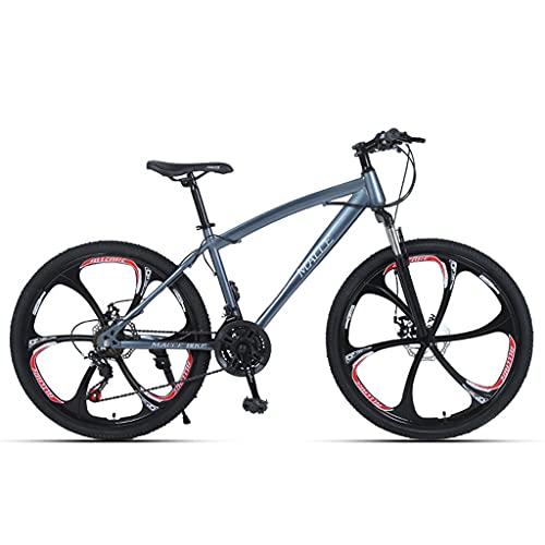 LHQ-HQ Bicicleta De Montaña, Rueda De 26', 24 Velocidades, Suspensión De Horquilla, Marco De Acero con Alto Contenido De Carbono, Apto para Niñas, Adultos, Adolescentes, Estudiantes,Gris