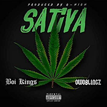 Sativa (feat. Owoblingz)