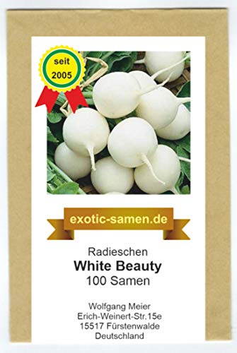 Radies, Radieschen - White Beauty - 100 Samen
