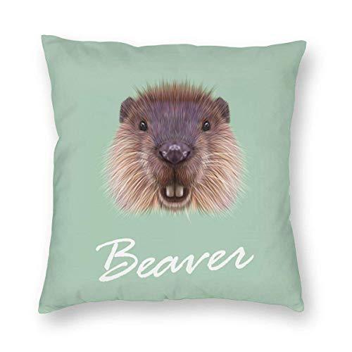 Moily Fayshow Throw Pillow Decorative Cushion Cover Pillowcase Cute Beaver Face 40 X 40 Cm