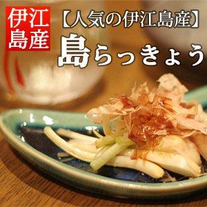 島らっきょう(伊江島産) 浅漬け【500g】【冷蔵】