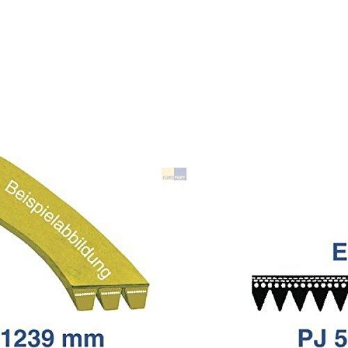Cinghia 1239PJ 5e 481235818215Bauknecht, Whirlpool, IKEA