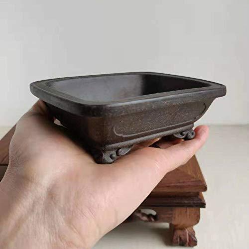 LOOPIG 1 Pcs Rectangular Chinese Yixing Zisha Shohin Cloud Feet Bonsai Pot 13x11x4.5cm